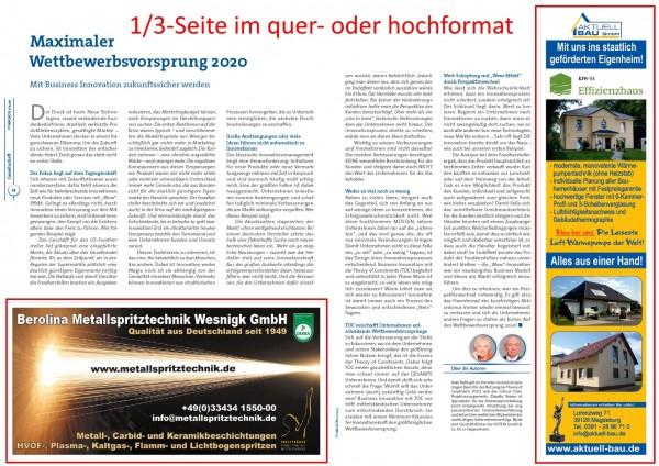 PT-Magazin | 1/3 - Seite im Printmagazin